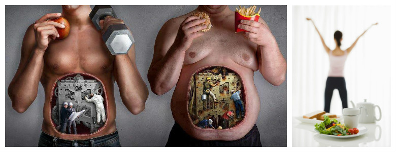 Правильное питание человека