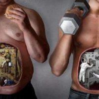 Элементы правильного питания